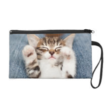 Kitten on lap. wristlet