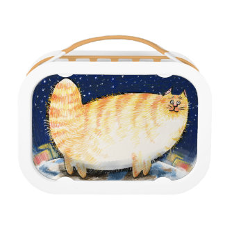 Kitten on top of the world lunch box