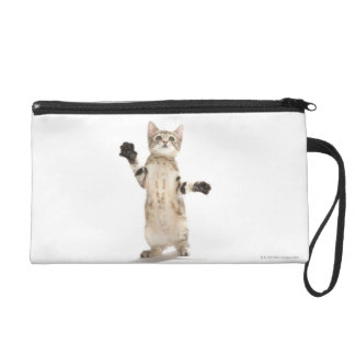 Kitten on White Background Wristlet Purse