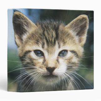 Kitten outdoors binder