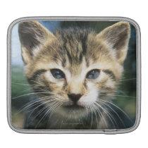 Kitten outdoors iPad sleeve
