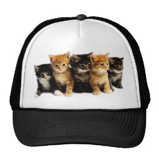 Kitten Outfits Trucker Hat