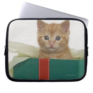 Kitten peeking out of gift box laptop sleeve