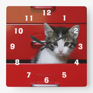 Kitten Peeking Square Wall Clock