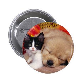 Kitten Pillow Button
