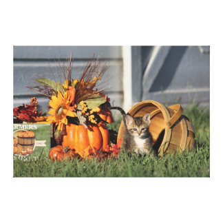 Kitten Playing In Basket During Fall Harvest Canvas Print