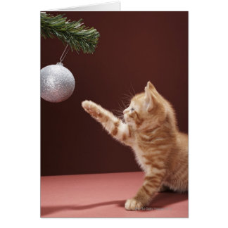 Kitten playing with Christmas bauble on tree Card