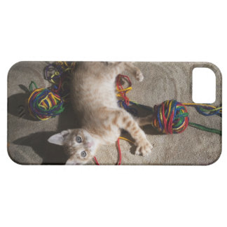 Kitten Playing With Yarn iPhone SE/5/5s Case
