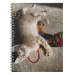 Kitten Playing With Yarn Note Books