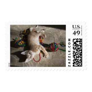 Kitten Playing With Yarn Stamp