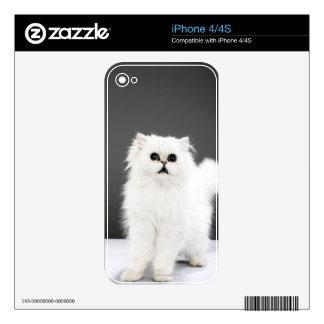 Kitten Portrait Skin For iPhone 4