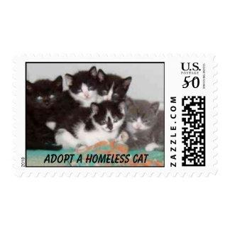 Kitten Postage