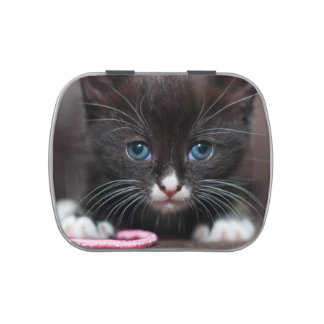 Kitten Power Jelly Belly Tins