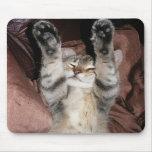 Kitten Power Mousepad