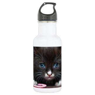 Kitten Power Water Bottle