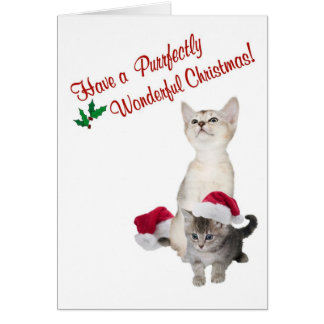 Kitten Purrfectly Wonderful Christmas Wishes Card