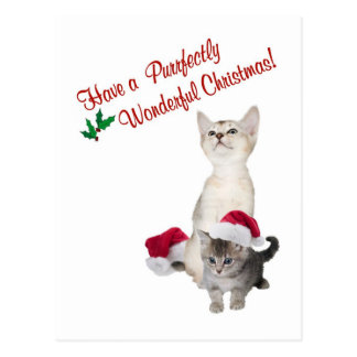 Kitten Purrfectly Wonderful Christmas Wishes Postcards
