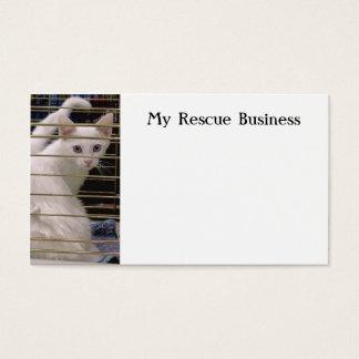 Kitten rescue business card