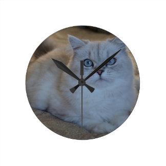 kitten round clock
