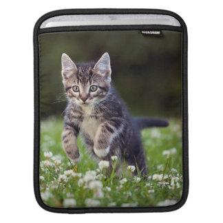 Kitten Running Through Clover iPad Sleeves
