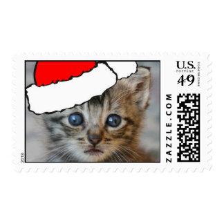Kitten santa hat stamp