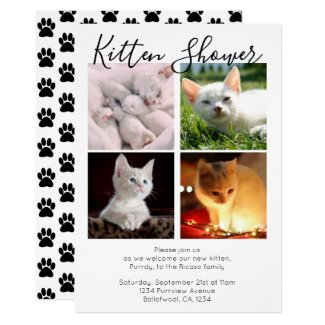 Kitten Shower Cute Personalized Cat Adoption Invitation