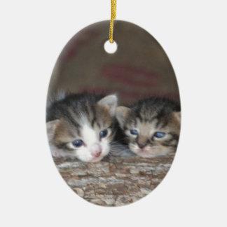 Kitten siblings ceramic ornament