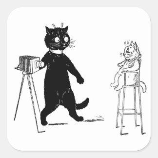 Kitten Sitting for Portrait Square Sticker