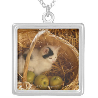 Kitten sitting in basket with fruits, elevated silver plated necklace