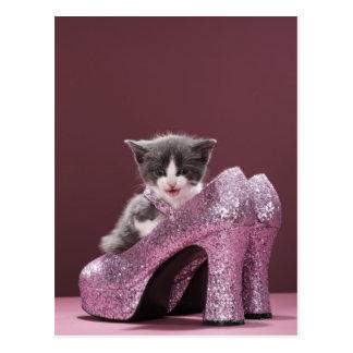 Kitten sitting in glitter shoes postcard