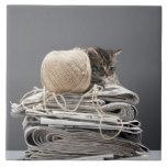 Kitten sitting on pile of newspapers ceramic tile