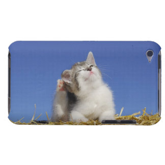 Kitten sitting on straw, scratching, close-up iPod Case-Mate case