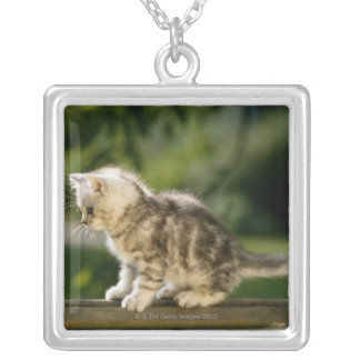 Kitten sitting on top of bench, side view silver plated necklace