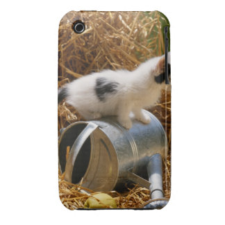 Kitten sitting on top of watering can iPhone 3 cover