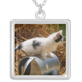 Kitten sitting on top of watering can silver plated necklace