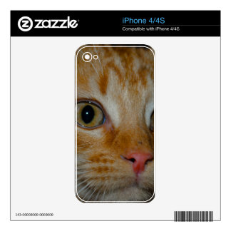 Kitten Decal For iPhone 4S