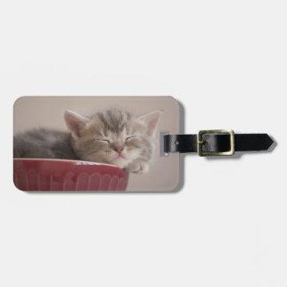 Kitten Sleeping In A Bowl Bag Tag