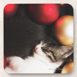 Kitten sleeping in decorations beverage coaster