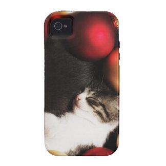 Kitten sleeping in decorations iPhone 4/4S cases