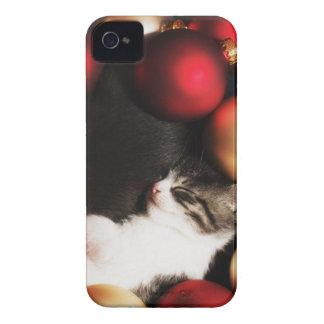 Kitten sleeping in decorations iPhone 4 case