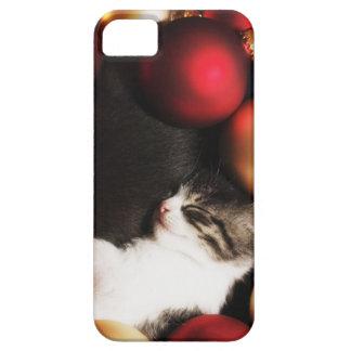 Kitten sleeping in decorations iPhone 5 cases