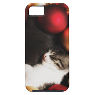 Kitten sleeping in decorations iPhone 5 covers