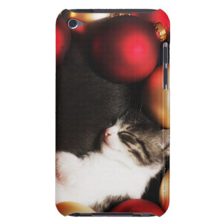 Kitten sleeping in decorations iPod touch covers