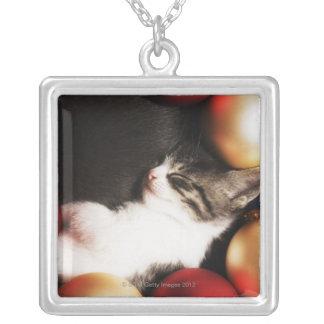 Kitten sleeping in decorations jewelry