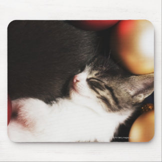 Kitten sleeping in decorations mouse pad