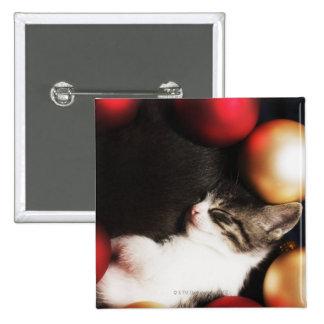 Kitten sleeping in decorations pinback button