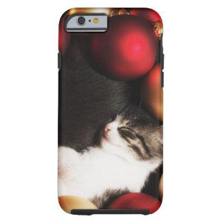 Kitten sleeping in decorations tough iPhone 6 case