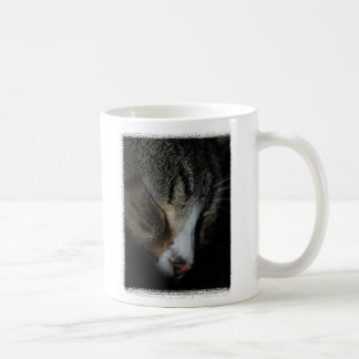 Kitten Sleeping Mug CUSTOMIZABLE