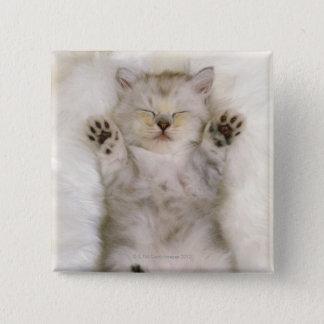 Kitten Sleeping on a White Fluffy Carpet, High Button