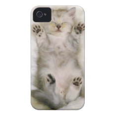 Kitten Sleeping On A White Fluffy Carpet, High Iphone 4 Case at Zazzle